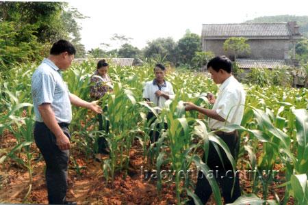 Lãnh đạo xã Yên Bình trao đổi với người dân về phát triển kinh tế gia đình trong Chương trình xây dựng nông thôn mới.