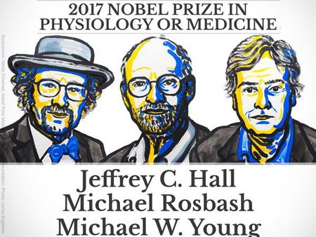 Ba nhà khoa học Mỹ giành giải Nobel Y học 2017.