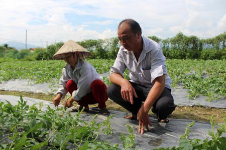 Anh Hà Văn Sinh - cán bộ địa chính, nông nghiệp xã Thanh Lương trao đổi kỹ thuật trồng dưa hấu với người dân.