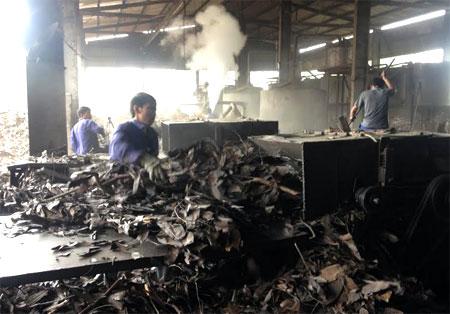 Chế biến tinh dầu quế đóng góp lớn vào giá trị sản xuất công nghiệp của huyện Văn Yên.
