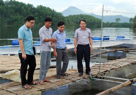 Cán bộ một số ngành của tỉnh, huyện Yên Bình kiểm tra cơ sở được hỗ trợ tiền đóng lồng nuôi cá trên hồ Thác Bà từ nguồn vốn tái cơ cấu ngành nông nghiệp.