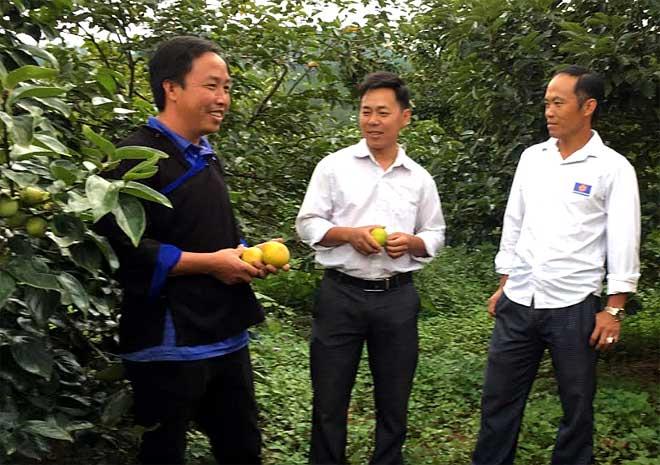 Anh Thào A Phổng ở bản Hua Khắt, xã Nậm Khắt giới thiệu với lãnh đạo xã về mô hình vườn cây ăn quả mới.