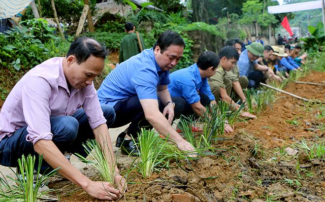 Bí thư Huyện ủy Yên Bình Đoàn Hữu Phung (thứ 2 từ trái sang) cùng nhân dân xã Tân Hương trồng xanh tại thôn Loan Thượng.