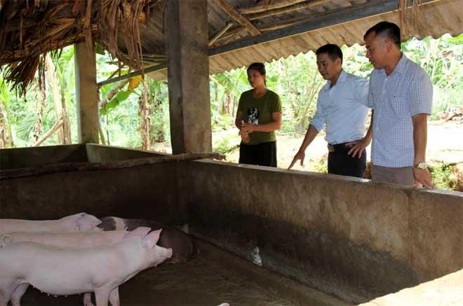 Lãnh đạo xã Hòa Cuông, huyện Trấn Yên tuyên truyền đến các hộ chăn nuôi về cách chăm sóc, phòng bệnh cho đàn lợn hiện có.