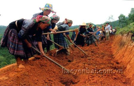 Giúp nông dân nâng cao thu nhập
