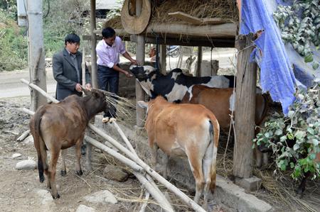 Cán bộ xã Khao Mang trao đổi với người dân về việc nuôi nhốt, dự trữ thức ăn cho gia súc trong mùa đông.