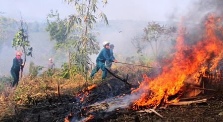 Diễn tập phòng cháy chữa cháy rừng - tìm kiếm cứu nạn tại xã Phù Nham, huyện Văn Chấn.