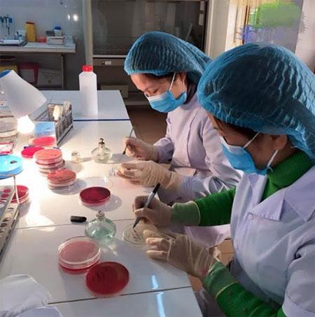 Cán bộ y tế Bệnh viện Đa khoa khu vực Nghĩa Lộ xét nghiệm chẩn đoán bệnh.