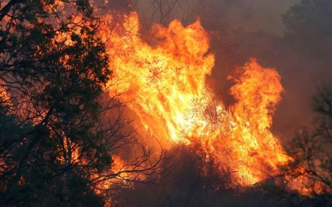 Cháy rừng ở Australia.