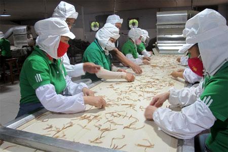 Quy định đóng BHXH bắt buộc đối với các đối tượng lao động ngắn hạn được cho là khó khả thi. (Ảnh: Chế biến măng tre xuất khẩu tại Công ty cổ phần Yên Thành).