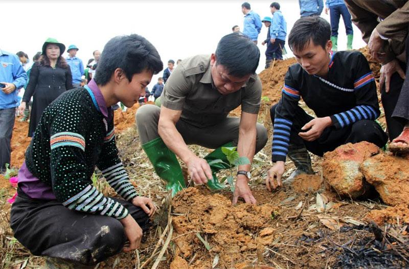 Cán bộ Hội Doanh nhân trẻ cùng các đoàn viên thanh niên trồng cây gáo vàng tại thôn Khuôn Bổ, xã Hồng Ca, huyện Trấn Yên.