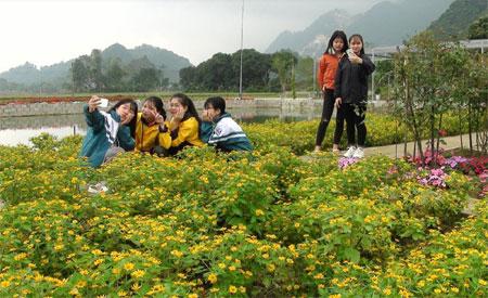 Các bạn trẻ thích thú chụp ảnh tại Khu du lịch sinh thái Đảo Ngọc.