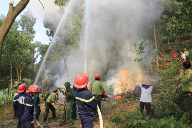Diễn tập phòng chống cháy rừng ở huyện Yên Bình. (Ảnh minh họa).