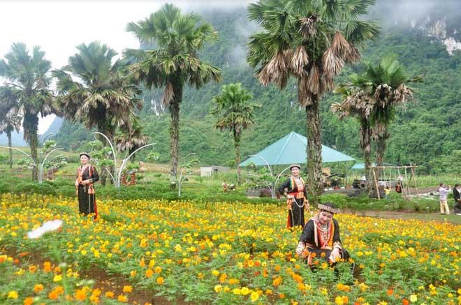 Bình nguyên Khai Trung thu hút khách du lịch đến thăm quan. (Ảnh: Đức Toàn)