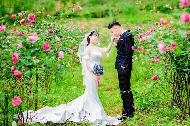 Những khoảnh khắc của cặp đôi hạnh phúc trên nền sắc hoa rực rớ của Bình nguyên xanh  Khai Trung