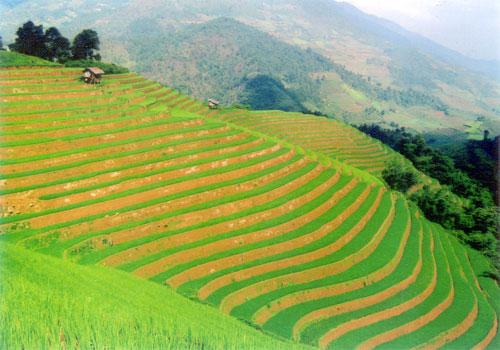 Kế hoạch tổ chức chương trình du lịch về cội nguồn năm 2011 của ba tỉnh Yên Bái - Lào Cai - Phú Thọ