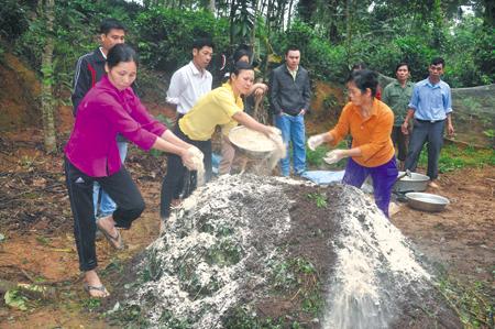 Nông dân xã Tân Hương, huyện Yên Bình thực hành ủ phân bón bằng chế phẩm sinh học.