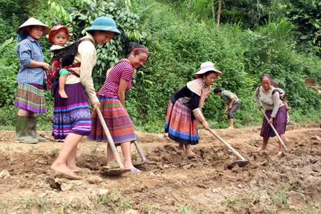 Xã Nà Hẩu, huyện Văn Yên là 1 trong 81 xã thuộc diện đầu tư của Chương trình 135 giai đoạn 2017 - 2020.  (Ảnh: Thu Trang)