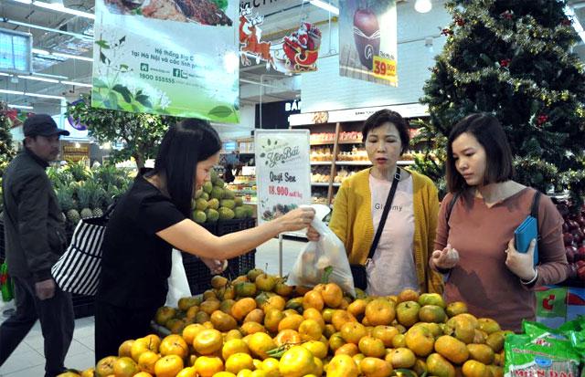 Sản phẩm quýt sen Văn Chấn trưng bày tại Siêu thị Big C được nhiều người tiêu dùng lựa chọn.