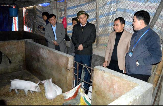 Đồng chí Nguyễn Văn Khánh – Phó Chủ tịch UBND tỉnh kiểm tra tình hình dịch lở mồm long móng tại xã Đông Cuông