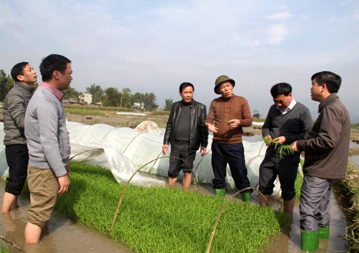 Phó Chủ tịch UBND tỉnh Nguyễn Văn Khánh kiểm tra công tác chống rét tại xã Hạnh Sơn, huyện Văn Chấn. Ảnh Văn Thông