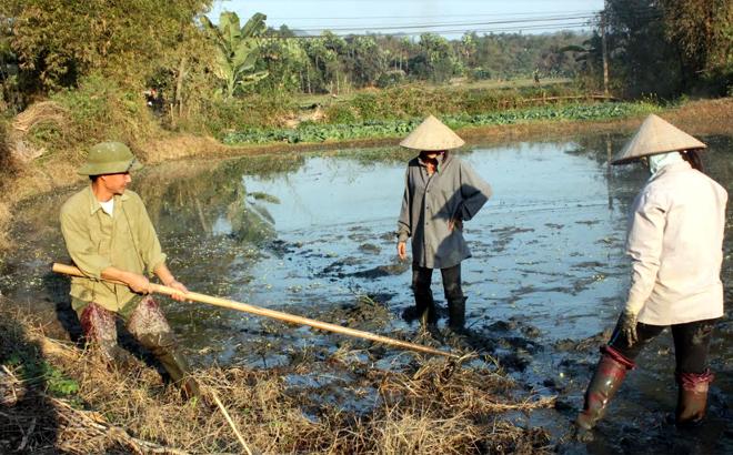 Nông dân huyện Yên Bình làm đất gieo cấy vụ xuân 2020.