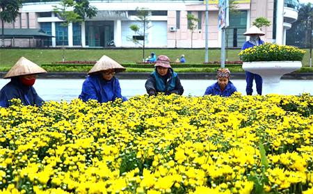 Công tác chuẩn bị đón Tết đã đảm bảo chu đáo, đáp ứng nhu cầu thưởng thức, vui chơi giải trí của nhân dân trong thành phố. (Ảnh: Thanh Chi)