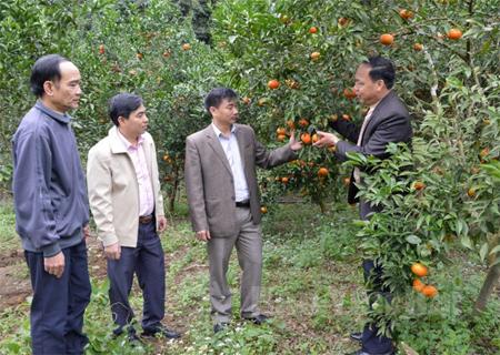 Đồng chí Nguyễn Chương Phát - Bí thư Huyện ủy Lục Yên (thứ 2 bên phải) kiểm tra việc thực hiện nghị quyết đại hội Đảng các cấp tại cơ sở.