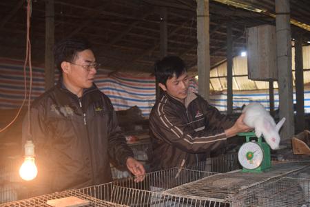 Anh Nông Ngọc Tú (bên phải) là người đầu tiên đưa thỏ về nuôi ở thôn 6, xã Yên Hưng, huyện Văn Yên.