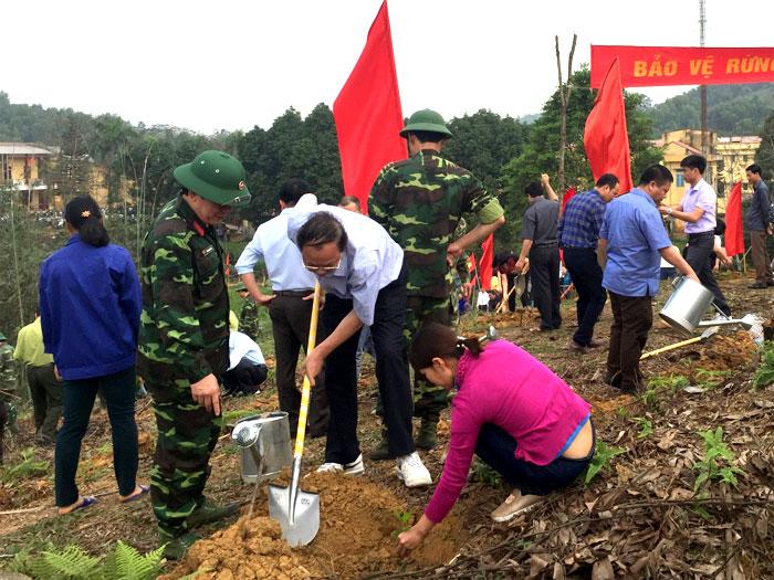 Ước tính, trong ngày đầu ra quân toàn huyện trồng được gần 55 ha rừng.