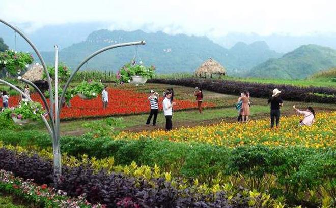Du lịch Bình nguyên xanh Khai Trung (Lục Yên) thu hút du khách
