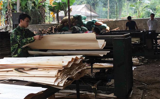 Các xưởng chế biến gỗ rừng trồng ở xã Tân Hương, huyện Yên Bình đã tạo nhiều việc làm, thu nhập ổn định cho lao động địa phương. (Ảnh: T.L)