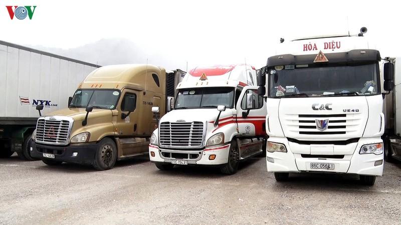 Bộ GTVT tổ chức điều tiết tiến độ vận chuyển, giao hàng tại khu vực cửa khẩu biên giới đường bộ.