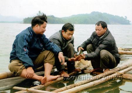 Nuôi trồng thủy sản là hướng phát triển kinh tế của người dân Phan Thanh.