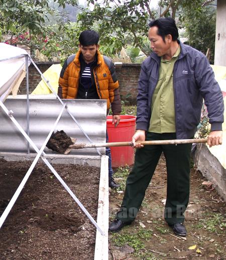 Ông Sách nuôi giun công nghiệp để chế biến thức ăn chăn nuôi.