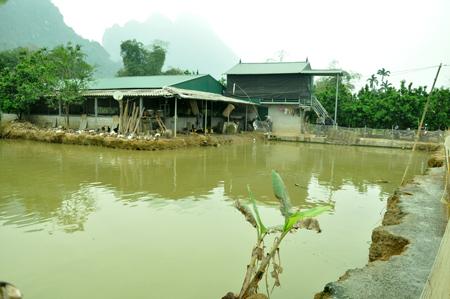 Mô hình kinh tế tổng hợp của ông Nguyễn Cao Nguyên, thôn 8 xã Minh Xuân cho thu nhập trên 100 triệu đồng/năm.