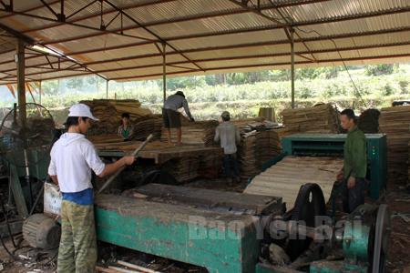 Sâu cây sắn việc trồng và chế biến gỗ là ngành nghề phát triển bền vững ở Vũ Linh.
