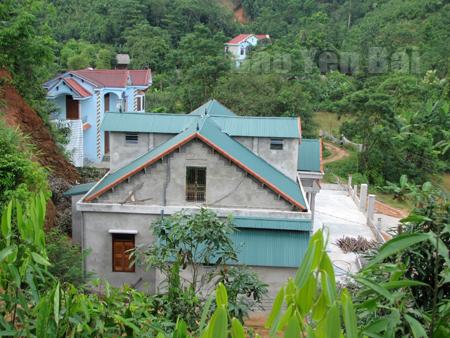 Những ngôi nhà đẹp nhờ trồng quế ở xã Đại Sơn.
