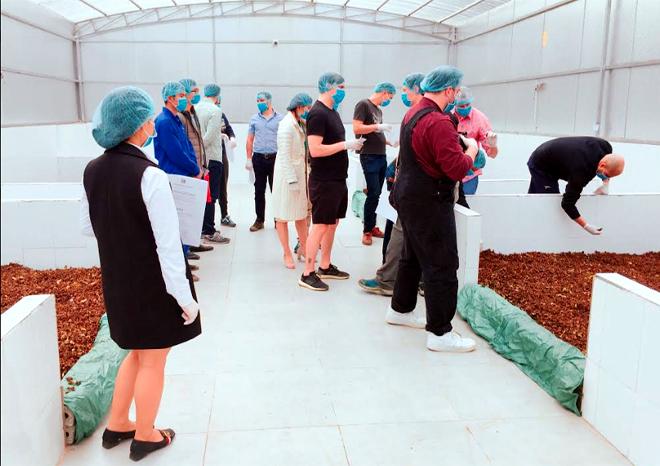 Đoàn khảo sát của Pháp, Anh, Nhật kiểm tra thực địa từ quy trình trồng, chăm sóc, thu hoạch và chế biến các sản phẩm quế của HTX Quế hồi Việt Nam.