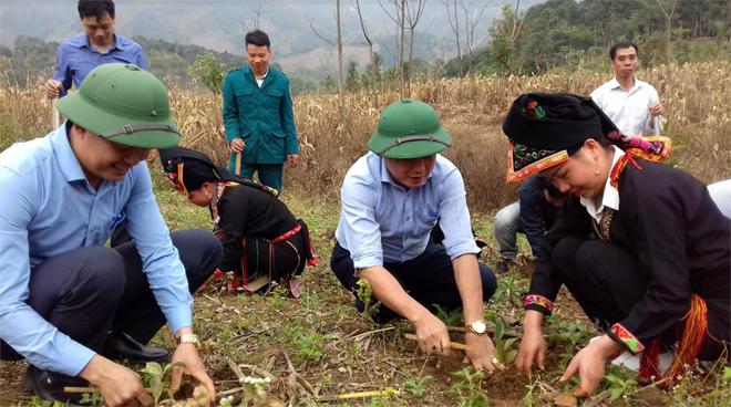 Nhân dân xã Xuân Tầm ra quân trồng rừng vụ xuân.