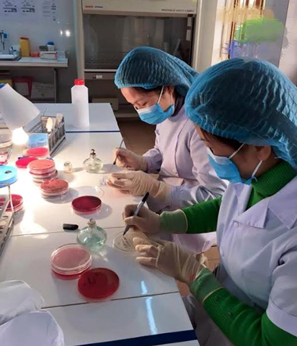 Cán bộ Bệnh viện Đa khoa khu vực Nghĩa Lộ làm xét nghiệm.