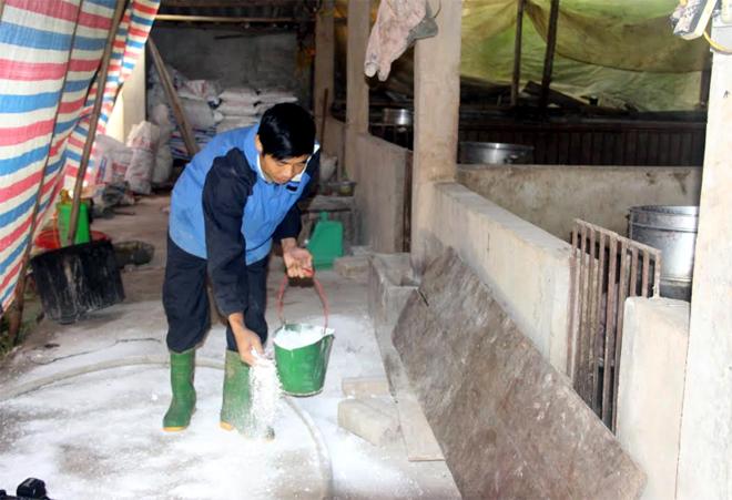 Các hộ chăn nuôi xã Minh Tiến, huyện Trấn Yên thực hiện tốt công tác tiêu độc, khử trùng khu vực chăn nuôi. (Ảnh: Minh Huyền)