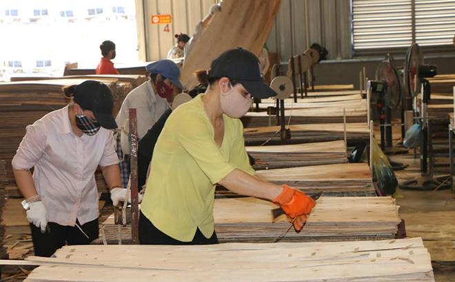 A production line of Thien An Vietnam Wood Co., Ltd.