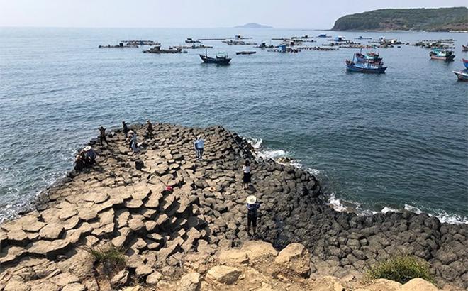 Để đảm bảo an toàn cho du khách, Phú Yên tạm dừng tham quan tại các di tích, danh lam thắng cảnh, trong đó có Gành đá đĩa.