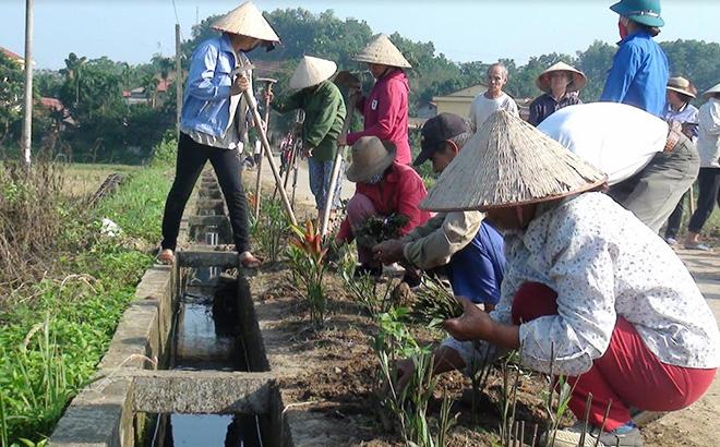 Các ban, ngành, đoàn thể xã Việt Thành tham gia dọn vệ sinh môi trường và trồng hoa hai bên đường vào các thôn của xã.