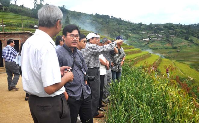 Các chuyên gia Hội đồng Di sản văn hóa quốc gia thực hiện điền dã nghiên cứu ruộng bậc thang ở Mù Cang Chải.