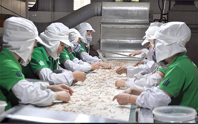 Nữ đoàn viên, lao động trong dây chuyền chế biến măng của Công ty cổ phần Yên Thành.