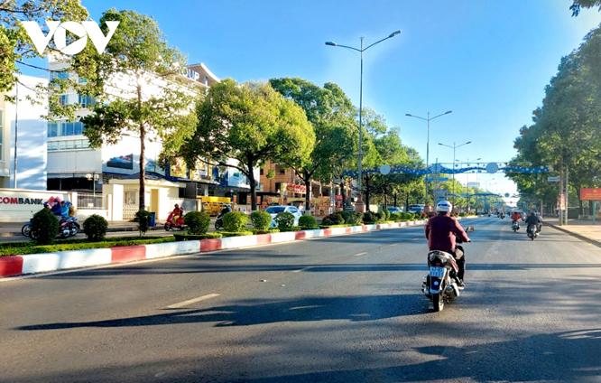 Các tuyến đường ở thành phố Buôn Ma Thuột đều xanh mướt bóng cây.
