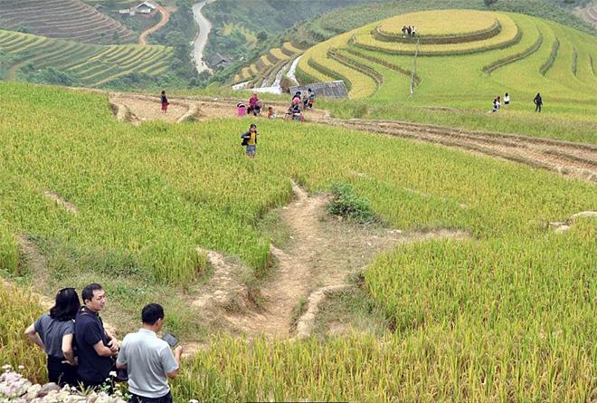 Du khách tham quan Di tích quốc gia đặc biệt Danh thắng Ruộng bậc thang Mù Cang Chải.
