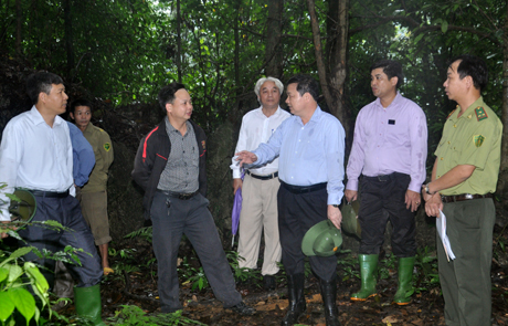Đồng chí Dương Văn Thống trao đổi với các lãnh đạo địa phương và các ngành liên quan về việc giữ rừng trên núi Nả, xã Việt Hồng.